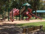 Playground in a wooded area